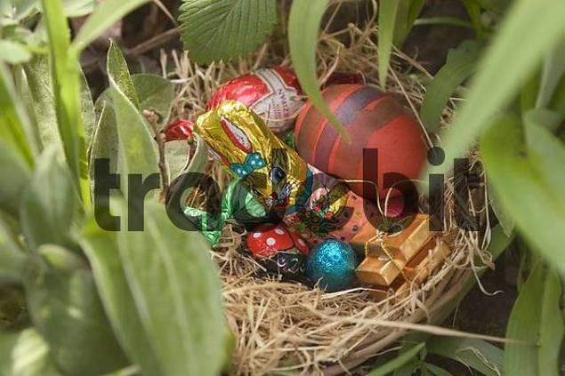 hidden easter nest with coloured eggs