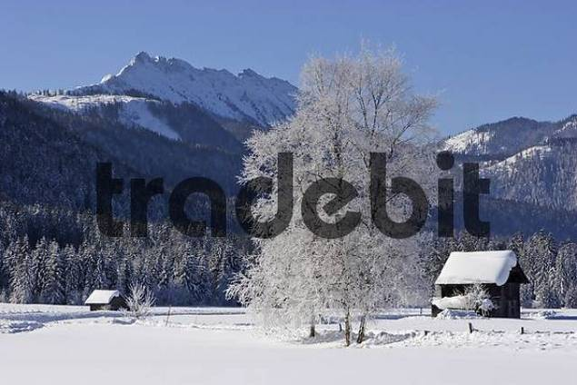 log cabins deeply covered with snow near Krungl Styria Austria