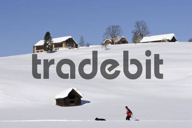 a farm on a hill and cross country skiing on a trail Krungl Styria Austria