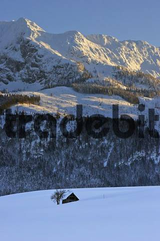 part of the mountain Grimming at sunset Krungl Styria Austria