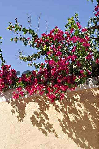Old Town of Eivissa - Capital of Ibiza