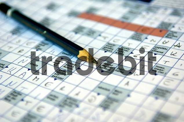 pen lying on a partial filled out crossword puzzle, close up view, detail