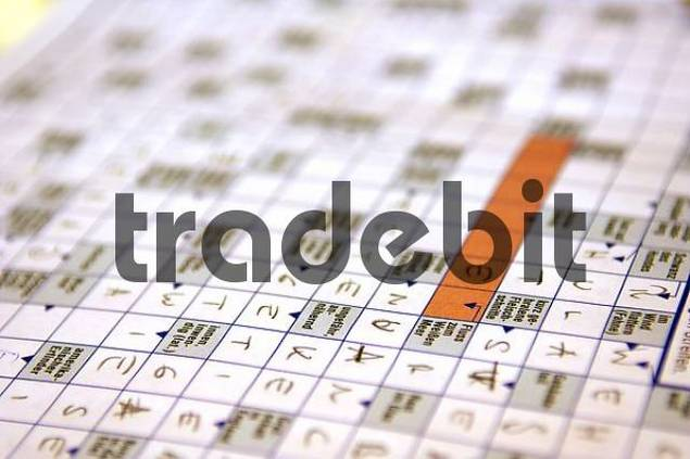 partial filled out crossword puzzle, close up view, detail