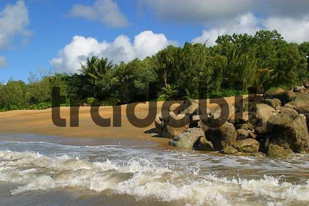 At the beachin queensland tableland cairns queensland australia