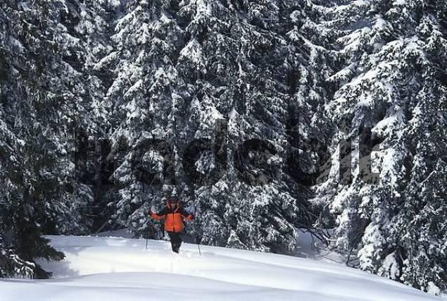 Sking in the Mountains Austria