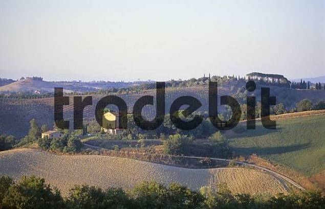 House in the Tuscany near Montalcino, Italy