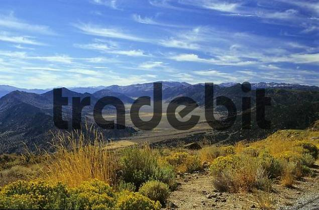 Valley in the Sierra Nevada, California, USA