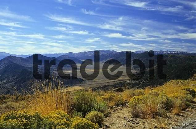 Valley in the Sierra Nevada, California, USA