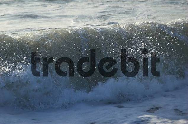Wave breaking at the beach of the North Sea, Denmark