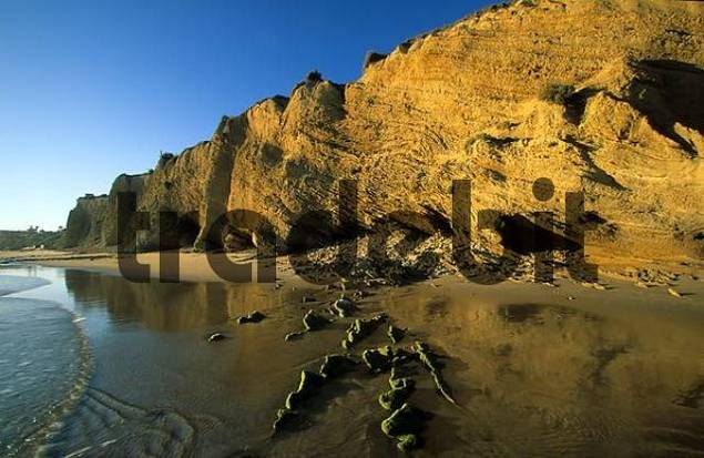 Conil de la Frontera Playa de Fontanilla - Costa de la Luz Andalusia Province Cdiz Spain