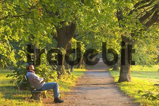 man enjoys the morning sun on a park bench in Perchtoldsdorf Lower Austria