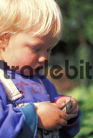Two-year-old boy examinating snail MR
