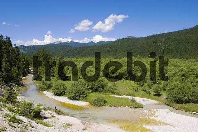 river Isar near Wallgau - Upper Bavaria
