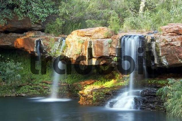 waterfall at Fern Pool in morning light Dales Gorge Karijini National Park Pilbara region western australia WA