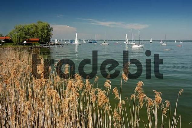 sailing boats on lake Chiemsee, Bavaria, Germany
