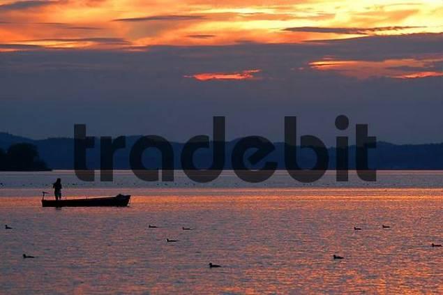 fisherman at sunset at lake Chiemsee, Bavaria, Germany