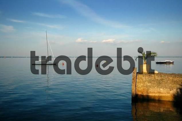 sailing boat and palm tree, lake Chiemsee, Bavaria, Germany