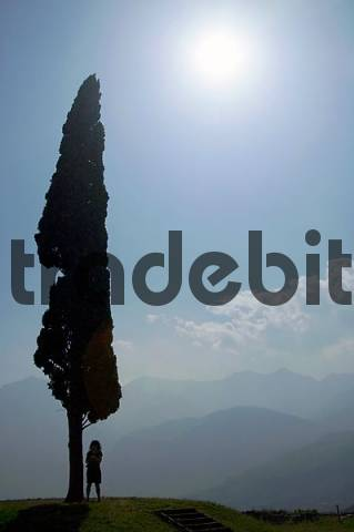 backlighting woman standing under cypress near to Arco Lake Garda, Italy