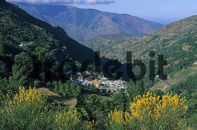 Spain Andalusia Granada Sierra Nevada Alpujarras Pampaneira