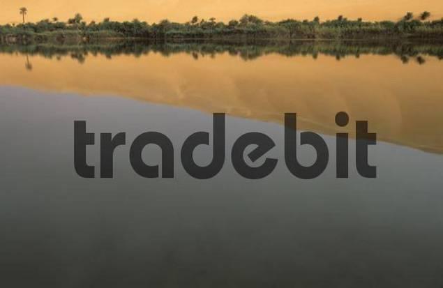 palm trees and sand dunes at Lake Gabroon, Erg Ubari, Idhan Awbari, Libya