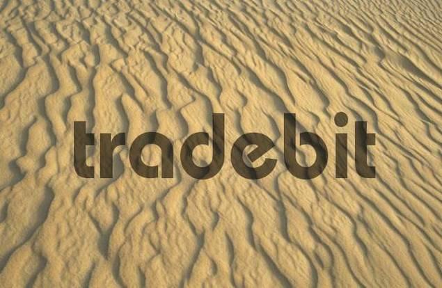 structures in the desert sand, Erg Rabianah, Ramlat Rabyanah, Libya