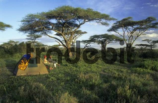 str_MR08_günterele, tent in the acacia forest near Ndutu Lake, Serengeti National Park, Tanzania