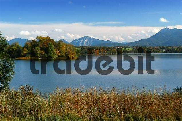 view onto Staffelsee and Bavarian Alps, Upper Bavaria, Bavaria, Germany