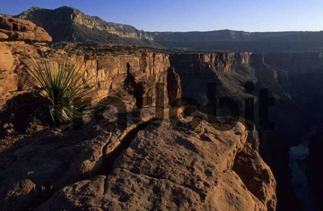 view from Toroweap Point, Grand Canyon National Park, Arizona, USA