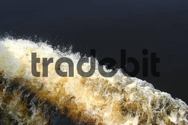 Surf Rio Negro Brazil