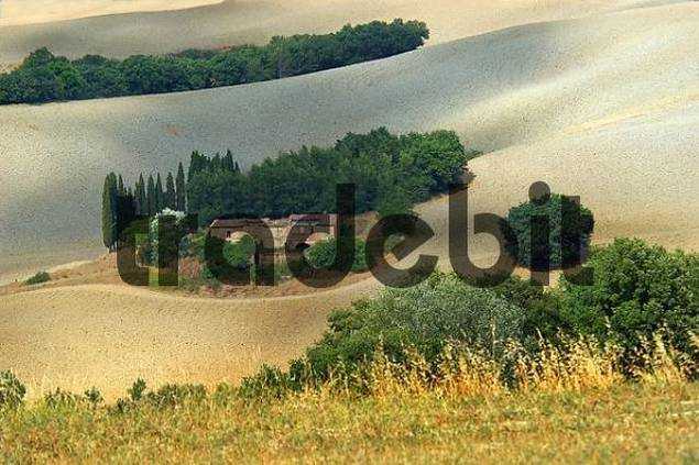 farm, Crete, Tuscany, Italy