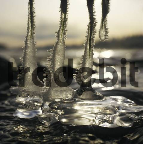 ice on river Isar Germany