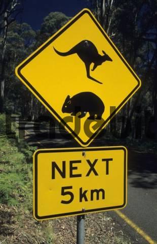 warnings sign for kangaroo and wombat, Victoria, Australia