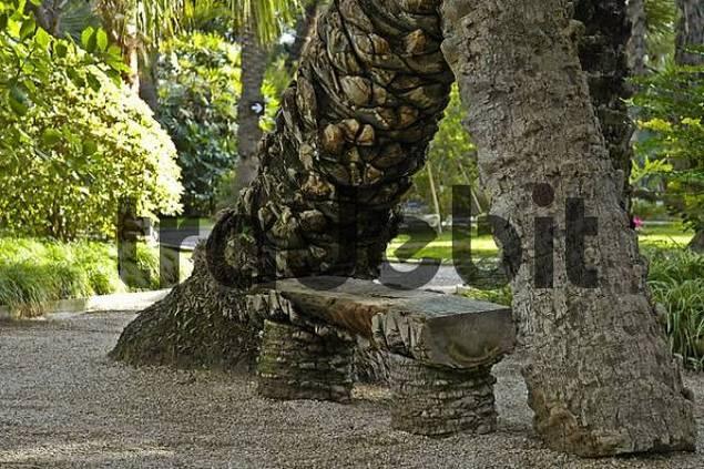 Seat in the palm grove , huerto del cura, Elx, Elche, Costa Blanca, Spain