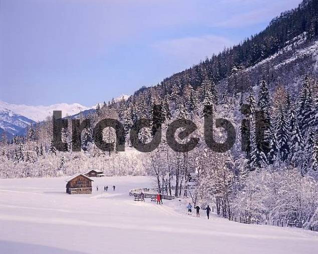 Winter landscape Tyrol Austria with cross country skiers