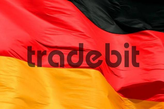 Detail, German flag