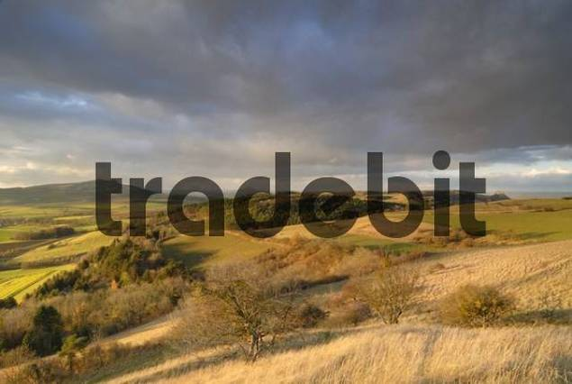 The hegau landscape in the sunset light - Baden Wuerttemberg, Germany, Europe.