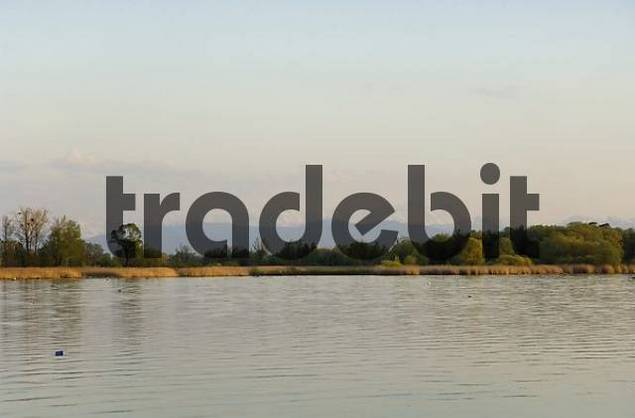 view of the south end of the Ammer lake and of the Alps with Wettersteinmassiv und Zugspitze from restaurant Aidenried Fischen Paehl Landkreis Weilheim in upper Bavaria Germany