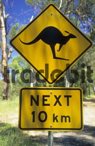 warning sign for wildlife, Mount Buffalo Nationalpark, Victoria, AUS