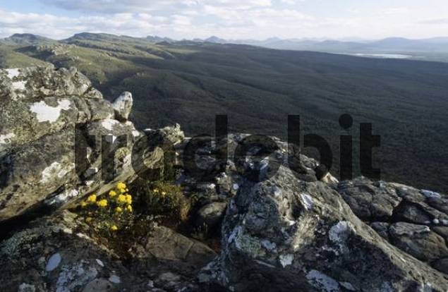 panorama from The Balconies in the Grampian Mountains, Grampians National Park, Victoria, AUS