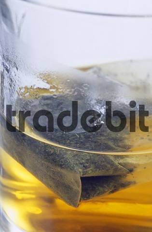 Tea bag, hot water and glass