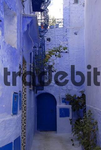 Light blue painted backyard medina Chefchaouen Morocco