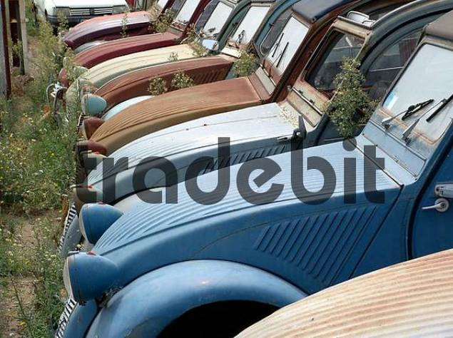 Scrap iron place with various generations of the citroen for Garage auto narbonne
