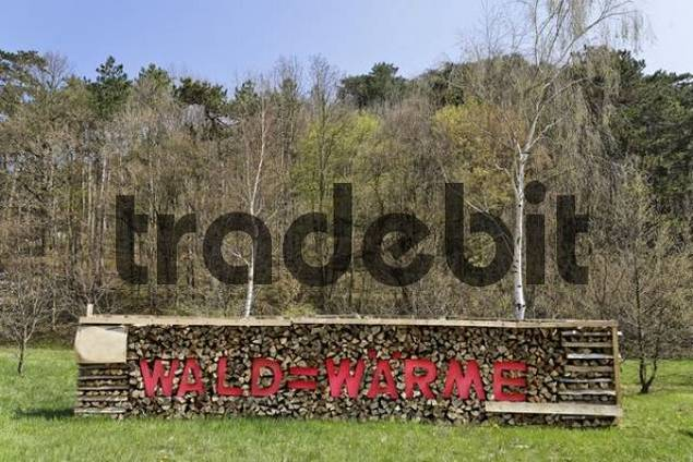 Log pile, firewood, with inscription quotWald ist gleich Waermequot forest equals warmth, Austria, Europe