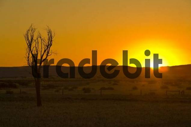 Sunset on the Namib Desert, Namibia, Africa