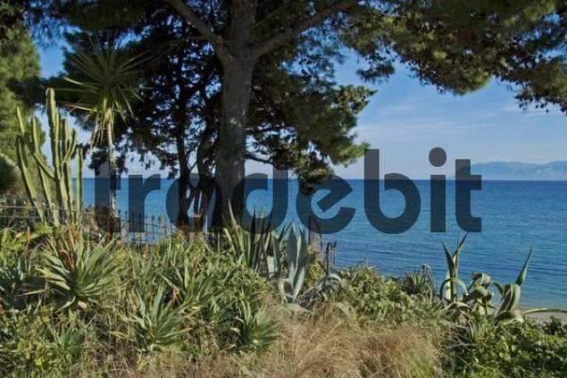 coast landscape Zingaro National Park, Zingaro, Sicily, Italy
