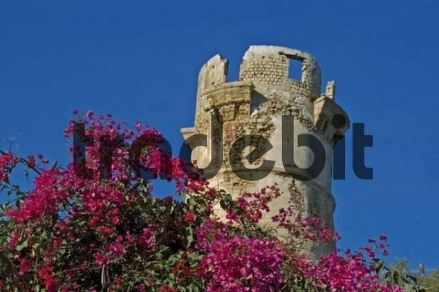 ruin defence tower Zingara National Park, Zingara, Sicily, Italy