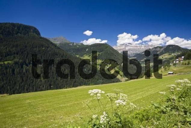 Marmolata Marmolada, Ampezzaner Alps, Dolomite Alps, Dolomites, South Tyrol, Italy, Europe