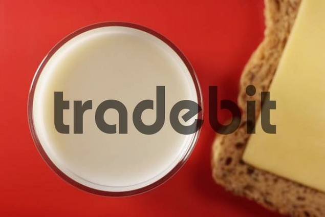 Glass and milk and a slice of bread with cheese
