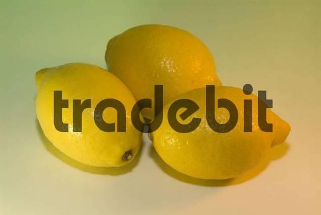 three yellow lemons whole fruits