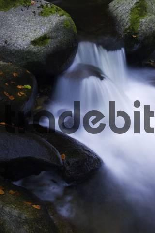 Cascade, Buchberger Leite, Bayrischer Wald Bavarian Forest, Bavaria, Germany, Europe